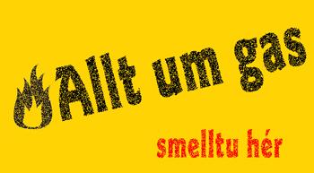 Smellið hér til að sjá nánar á síðu Slökkvilið höfuðborgarsvæðisins (www.shs.is)